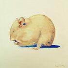 Hamster by Megan  Koth