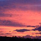 Sunrise Clouds by Jenelle  Irvine