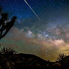 Camelopardalid Meteor Strike Over Joshua Tree Milky Way by Gavin Heffernan