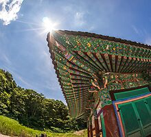 South Korean temple by aaronchoi