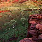 The Painted Pilbara by Mieke Boynton
