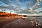 Reddell Rocks by Mieke Boynton