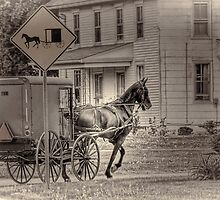 Caution: Horse & Buggy by Dyle Warren