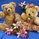 My Two Teddy Bears  by Vivian Eagleson