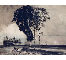 Landscape with Three Trees Photographic Print