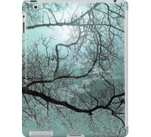 Blue Danube'... iPad Case/Skin