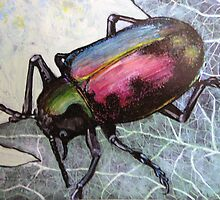 Dung Beetle Beauty by Laurieann Dygowski