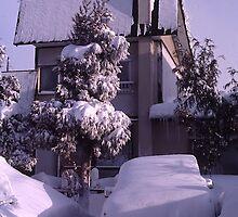 Overnight Snow, Sapporo, Hokkaido, Japan by johnrf