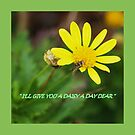 I'll give you a daisy a day tote bag  by Virginia McGowan