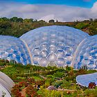 Eden Project Biomes by Chris Thaxter