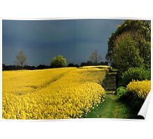 Bright fields and dark clouds Poster