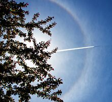 sun halo and plane shadow by Manon Boily