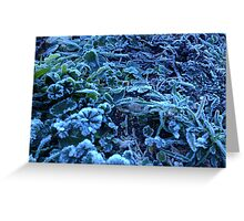 before snowing Greeting Card