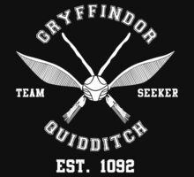 Gryffindor Quidditch Team Seeker by valvecrov