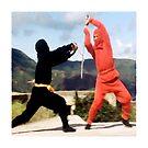 Only a ninja can kill a ninja by TimChuma