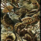 Haeckel's Lizards and Reptiles by dianegaddis