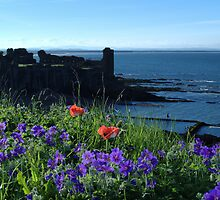 Scenes from St Andrews by Adrian Wale