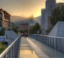 Glass Bridge by troxeld