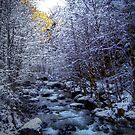 When The Cold Snow Blows by Charles & Patricia   Harkins ~ Picture Oregon