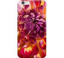 Dazzling Dahlia iPhone Case/Skin