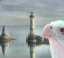 BIRD OF PREY by Icarusismart
