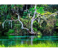 Emerald Paradise, Rainbow Springs Florida Photographic Print