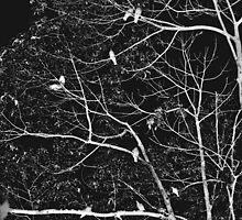 progenies of night  by queenenigma
