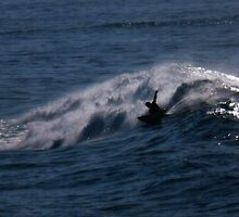 Lone surfer by ndarby1