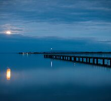 Moonrise Over Bay by Mark Eden