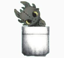 Toothless is in here by krystel04