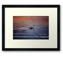 Swan Lake Abstract Framed Print
