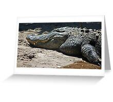 gator 001 Greeting Card