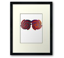 Double Spiral ~~ * Framed Print