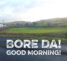 Good Morning! Bore Da! by Hywel Edwards