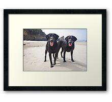 Sand Dogs Framed Print