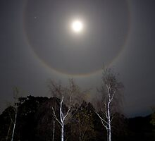 Moon Halo by Chris Cobern