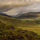 Molly's Gap Co Kerry Ireland by woodnimages