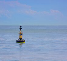 The Buoy by Chris Thaxter