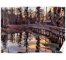 Twilight Sparkles over Cattail Trail Poster