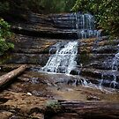 Waterfall, Tasmania by mindy23