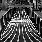 Beneath the Alexander bridge, Paris, France. by Neville Jones