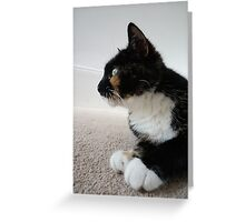 Looking Left Greeting Card