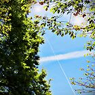 Contrail of the Cross by Terri Chandler