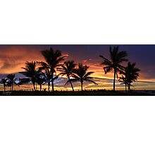 Cable Beach Palms Photographic Print