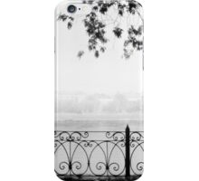 Cobweb morning iPhone Case/Skin