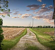 The Old Country Lane  by LarryB007