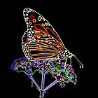 Monarch Butterfly neon  by NewfieKeith