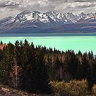 Lake Pukaki by Steven  Sandner