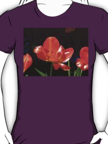 Dazzling Red Tulips T-Shirt