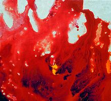Fluid Acrylic Painting Red Abstract Floral by hollyanderson